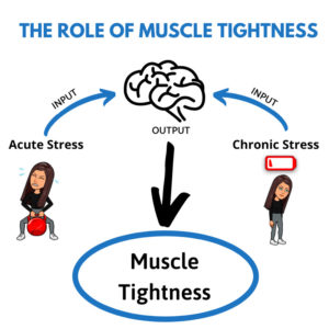 The Role of Muscle Tightness